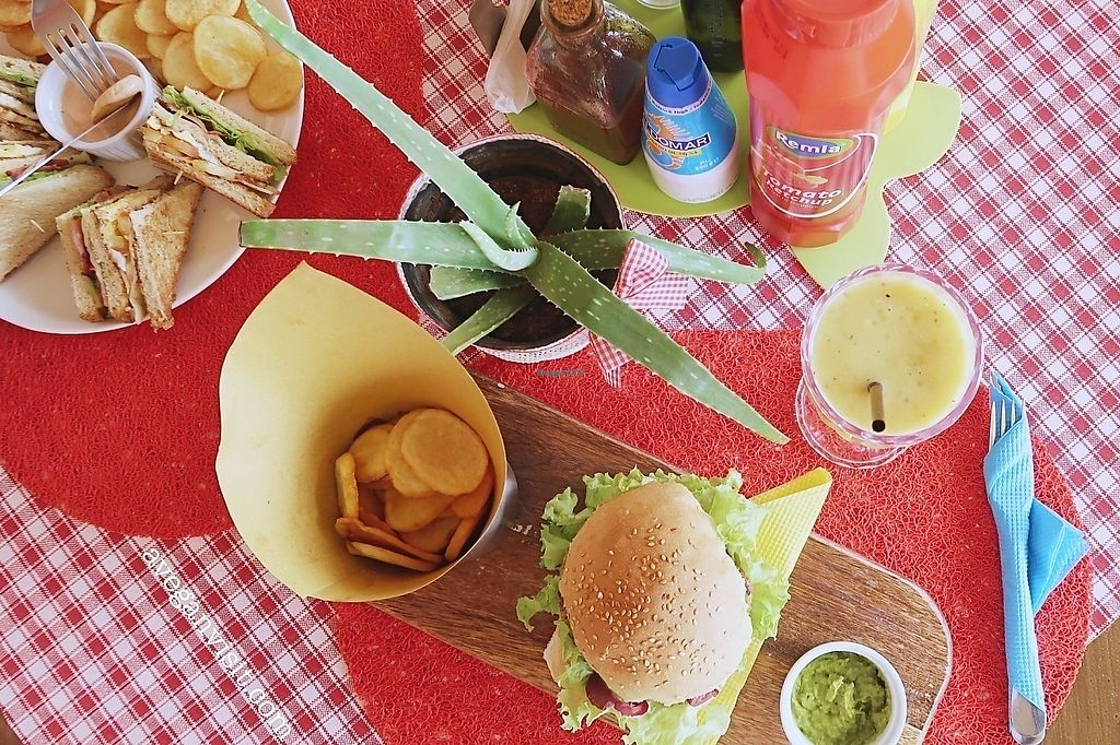"""Photo of By Valeria  by <a href=""""/members/profile/AVeganVisit.com"""">AVeganVisit.com</a> <br/>The delicious chickpea burger <br/> April 13, 2018  - <a href='/contact/abuse/image/84967/385292'>Report</a>"""