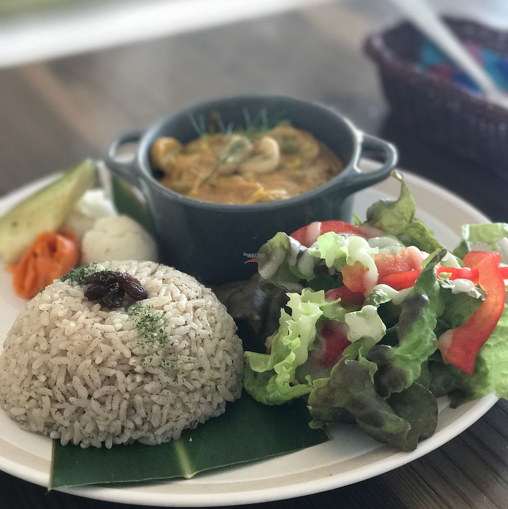 """Photo of Imacoco  by <a href=""""/members/profile/LunaQTuna"""">LunaQTuna</a> <br/>delicious curry <br/> April 16, 2017  - <a href='/contact/abuse/image/85000/248704'>Report</a>"""