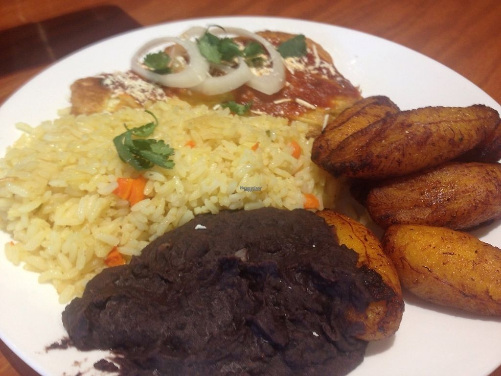 """Photo of Peace Nation   by <a href=""""/members/profile/EwelinaGasior"""">EwelinaGasior</a> <br/>Marinated palm flower with rice , black beans & sweet plantains  <br/> January 18, 2017  - <a href='/contact/abuse/image/85233/212938'>Report</a>"""