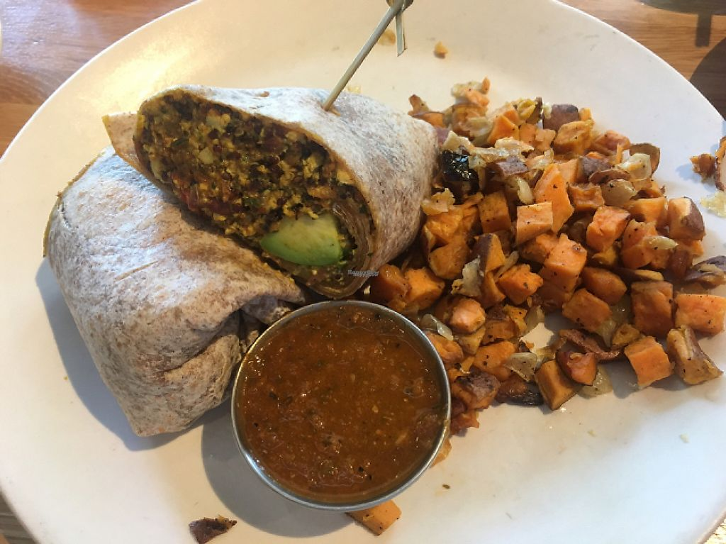 """Photo of True Food Kitchen  by <a href=""""/members/profile/CColors"""">CColors</a> <br/>Vegan Chorizo Burrito  <br/> April 24, 2017  - <a href='/contact/abuse/image/85298/251839'>Report</a>"""