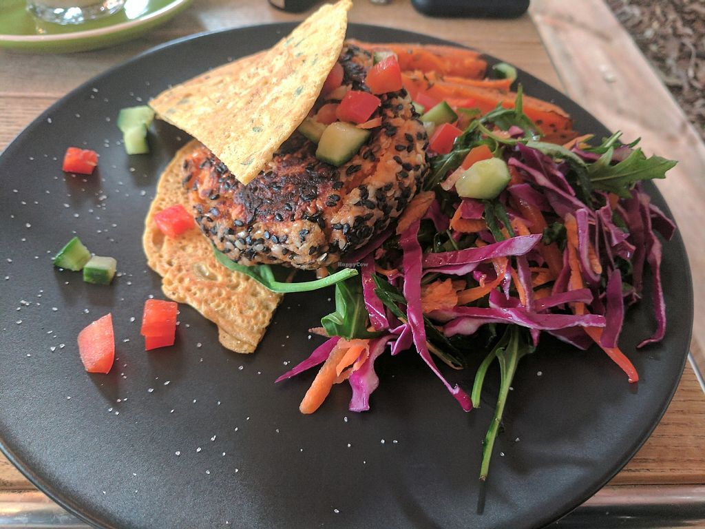 "Photo of Modern Organic  by <a href=""/members/profile/tjn1992"">tjn1992</a> <br/>Veggie Burger <br/> June 29, 2017  - <a href='/contact/abuse/image/85316/274570'>Report</a>"