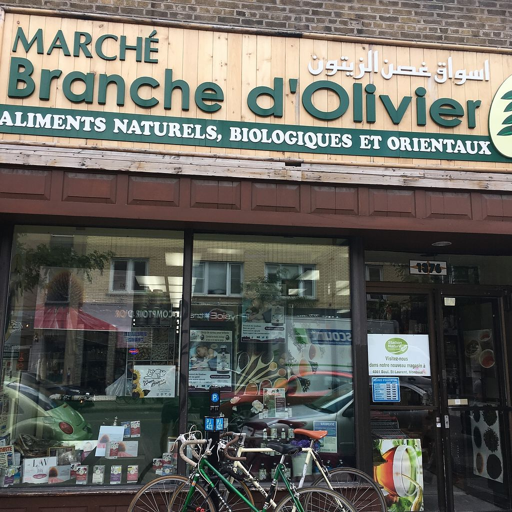 """Photo of Branche d'Olivier  by <a href=""""/members/profile/mcsnv"""">mcsnv</a> <br/>Branche d'Olivier <br/> July 4, 2017  - <a href='/contact/abuse/image/85448/276643'>Report</a>"""