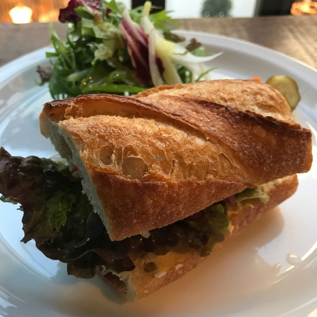 """Photo of Yidaki Cafe  by <a href=""""/members/profile/lemurcat"""">lemurcat</a> <br/>very nice hummus sandwich  <br/> May 5, 2017  - <a href='/contact/abuse/image/85605/255820'>Report</a>"""