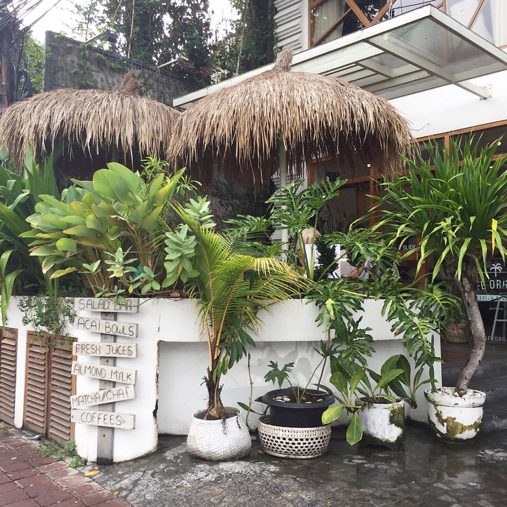 """Photo of Cafe Organic - Seminyak  by <a href=""""/members/profile/Eefie"""">Eefie</a> <br/>Nice place <br/> May 31, 2017  - <a href='/contact/abuse/image/85641/264368'>Report</a>"""