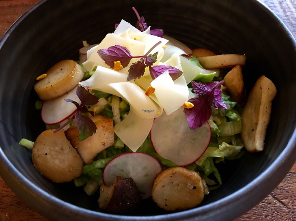 """Photo of PUUR!  by <a href=""""/members/profile/Damchozangmo"""">Damchozangmo</a> <br/>vegetarischer Salat mit Kräuterseitlingen <br/> April 15, 2017  - <a href='/contact/abuse/image/85651/248362'>Report</a>"""
