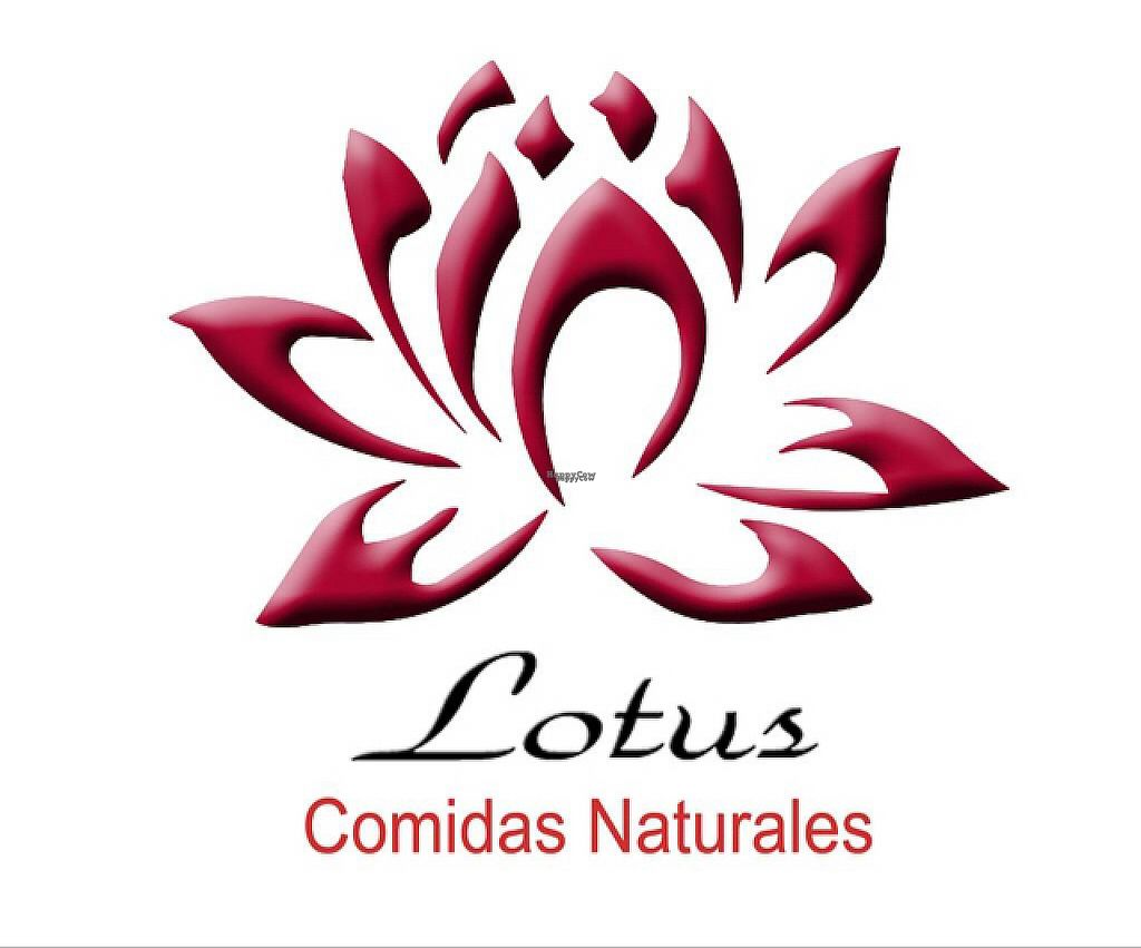 """Photo of Lotus  by <a href=""""/members/profile/missLape"""">missLape</a> <br/>logo  <br/> January 16, 2017  - <a href='/contact/abuse/image/85667/212507'>Report</a>"""