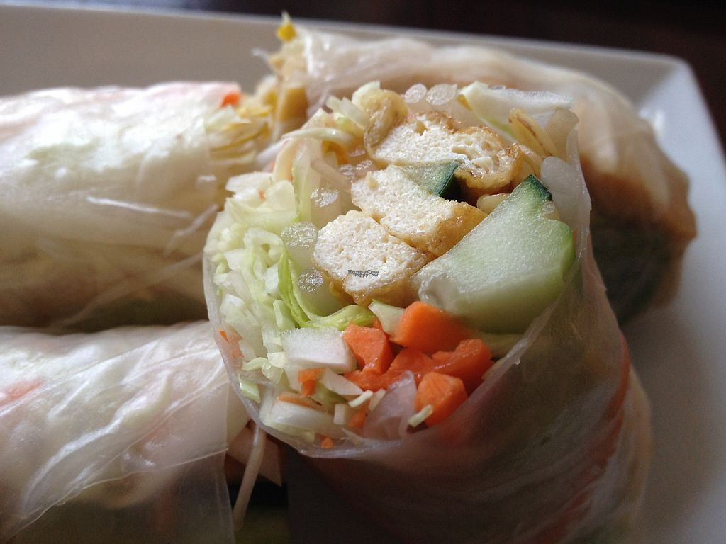 """Photo of Tamayo's  by <a href=""""/members/profile/NorthFalke"""">NorthFalke</a> <br/>Tofu fresh roll <br/> January 18, 2017  - <a href='/contact/abuse/image/85683/213090'>Report</a>"""