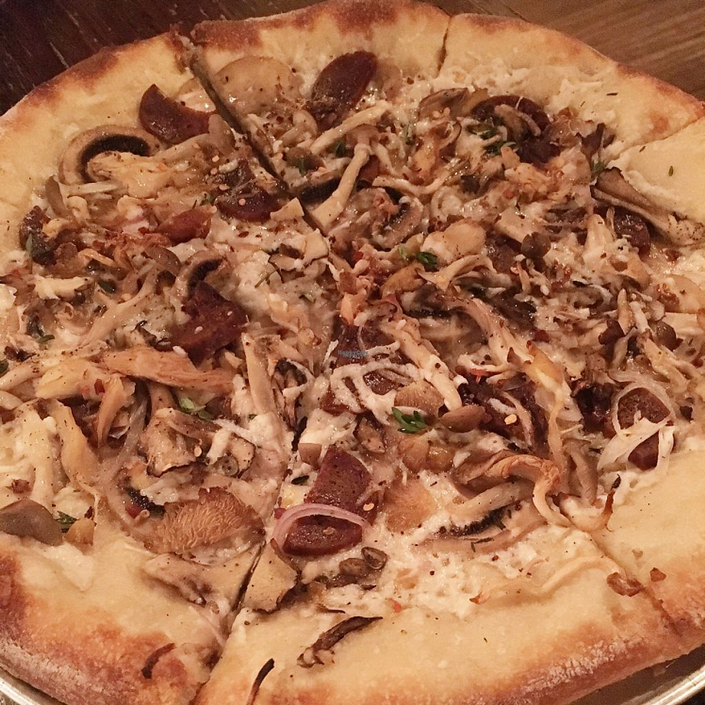 """Photo of Li'l Nonna's - Food Truck  by <a href=""""/members/profile/Laceface"""">Laceface</a> <br/>Wild mushroom special with vegan cheese <br/> February 28, 2017  - <a href='/contact/abuse/image/85830/231154'>Report</a>"""