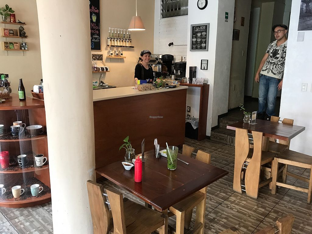 """Photo of Café Loto  by <a href=""""/members/profile/ElmarBacher"""">ElmarBacher</a> <br/>Lovely little restaurant in centre of Morelia. Pleasant service, nice menu and enjoing. They serve vegetarian and vegan main dishes and sweets <br/> September 22, 2017  - <a href='/contact/abuse/image/86026/307201'>Report</a>"""