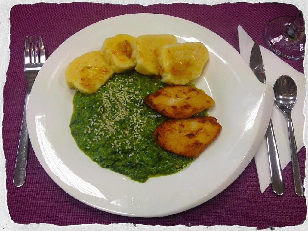 "Photo of Minirestaurace U Denci  by <a href=""/members/profile/Makita"">Makita</a> <br/>Czech classic - spinach with potato dumplings <br/> January 26, 2017  - <a href='/contact/abuse/image/86046/217061'>Report</a>"
