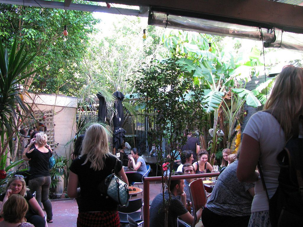 "Photo of Sappho Books Cafe & Bar  by <a href=""/members/profile/berrybluee"">berrybluee</a> <br/>Courtyard <br/> January 27, 2017  - <a href='/contact/abuse/image/86098/218033'>Report</a>"