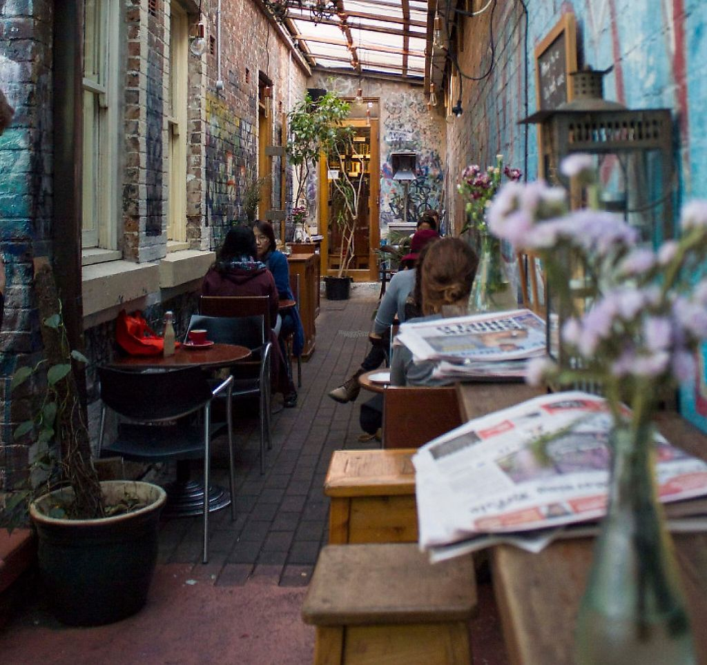 "Photo of Sappho Books Cafe & Bar  by <a href=""/members/profile/berrybluee"">berrybluee</a> <br/>Between Bookstore & Courtyard <br/> January 27, 2017  - <a href='/contact/abuse/image/86098/248203'>Report</a>"
