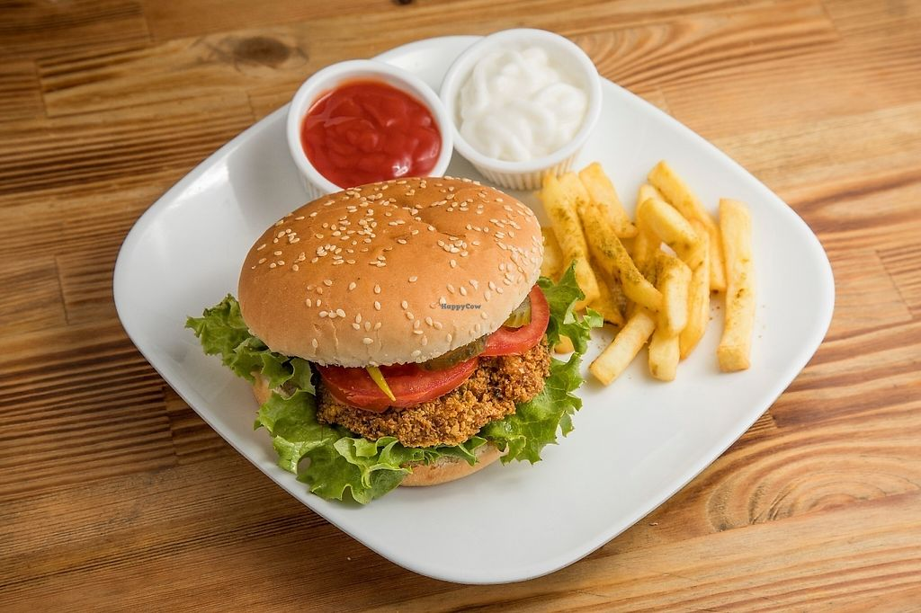 """Photo of Felafel Koy  by <a href=""""/members/profile/AdnanMliie"""">AdnanMliie</a> <br/>falafel burger with frinsh potates with vegan mayonez  <br/> May 24, 2017  - <a href='/contact/abuse/image/86103/262175'>Report</a>"""