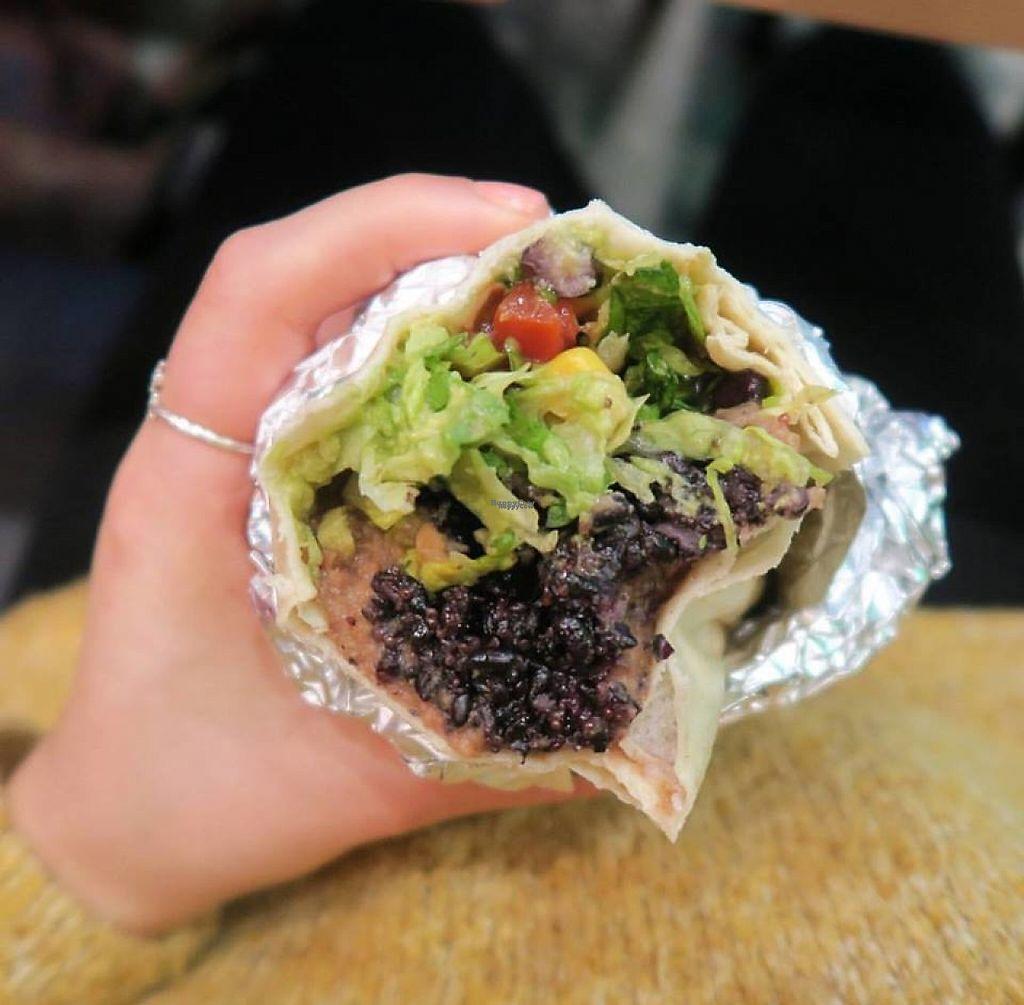"Photo of Zambrero  by <a href=""/members/profile/community"">community</a> <br/>Vegan Burrito <br/> January 27, 2017  - <a href='/contact/abuse/image/86159/217919'>Report</a>"