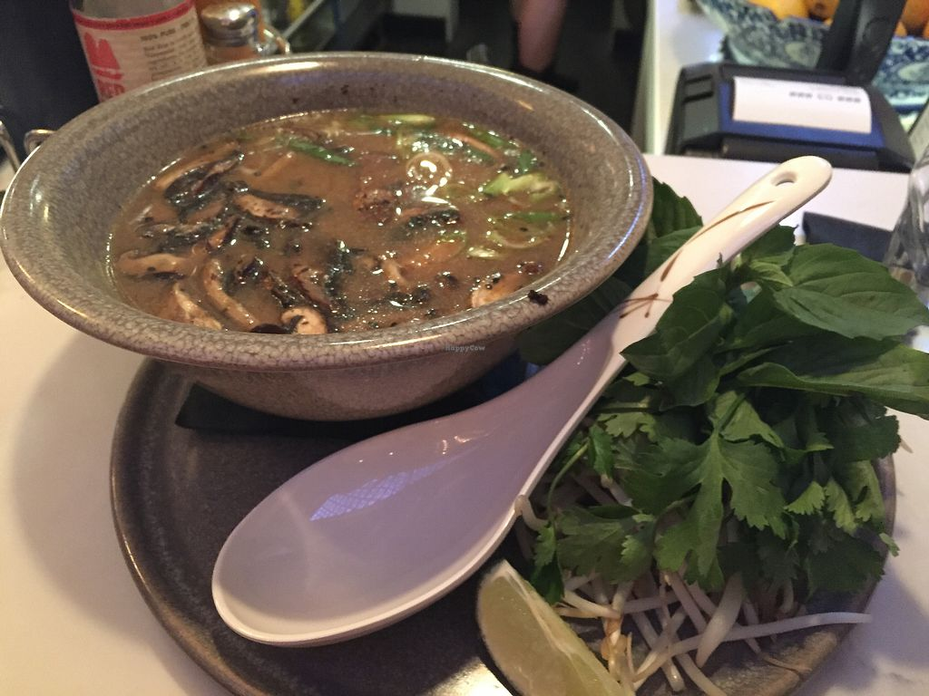 """Photo of Yum Son  by <a href=""""/members/profile/ChelseaAprilNovak"""">ChelseaAprilNovak</a> <br/>Plant-based pho <br/> September 23, 2017  - <a href='/contact/abuse/image/86330/307512'>Report</a>"""