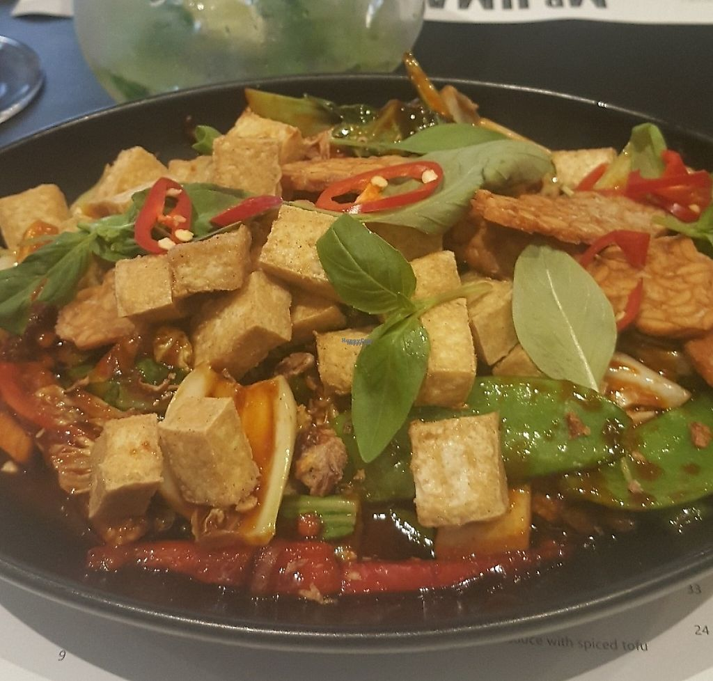 """Photo of Mr. Umamis  by <a href=""""/members/profile/GenevieveMareeHartne"""">GenevieveMareeHartne</a> <br/>General Tso's Tofu <br/> February 2, 2017  - <a href='/contact/abuse/image/86416/256990'>Report</a>"""