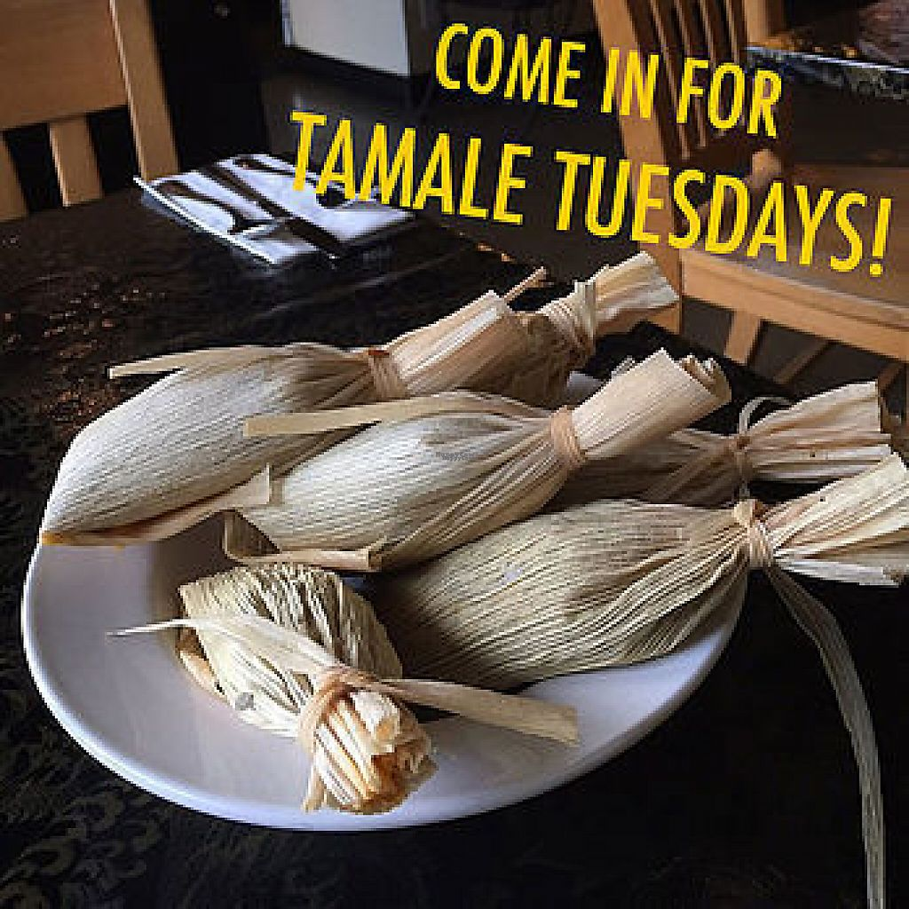 "Photo of La Panza Cafe  by <a href=""/members/profile/kellycostas"">kellycostas</a> <br/>delicious vegan tamales! <br/> February 23, 2017  - <a href='/contact/abuse/image/86508/229757'>Report</a>"