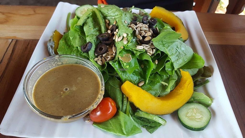 "Photo of Ohkajhu Organic Restaurant  by <a href=""/members/profile/GuruYoga"">GuruYoga</a> <br/>organic salad  <br/> February 10, 2017  - <a href='/contact/abuse/image/86519/224905'>Report</a>"