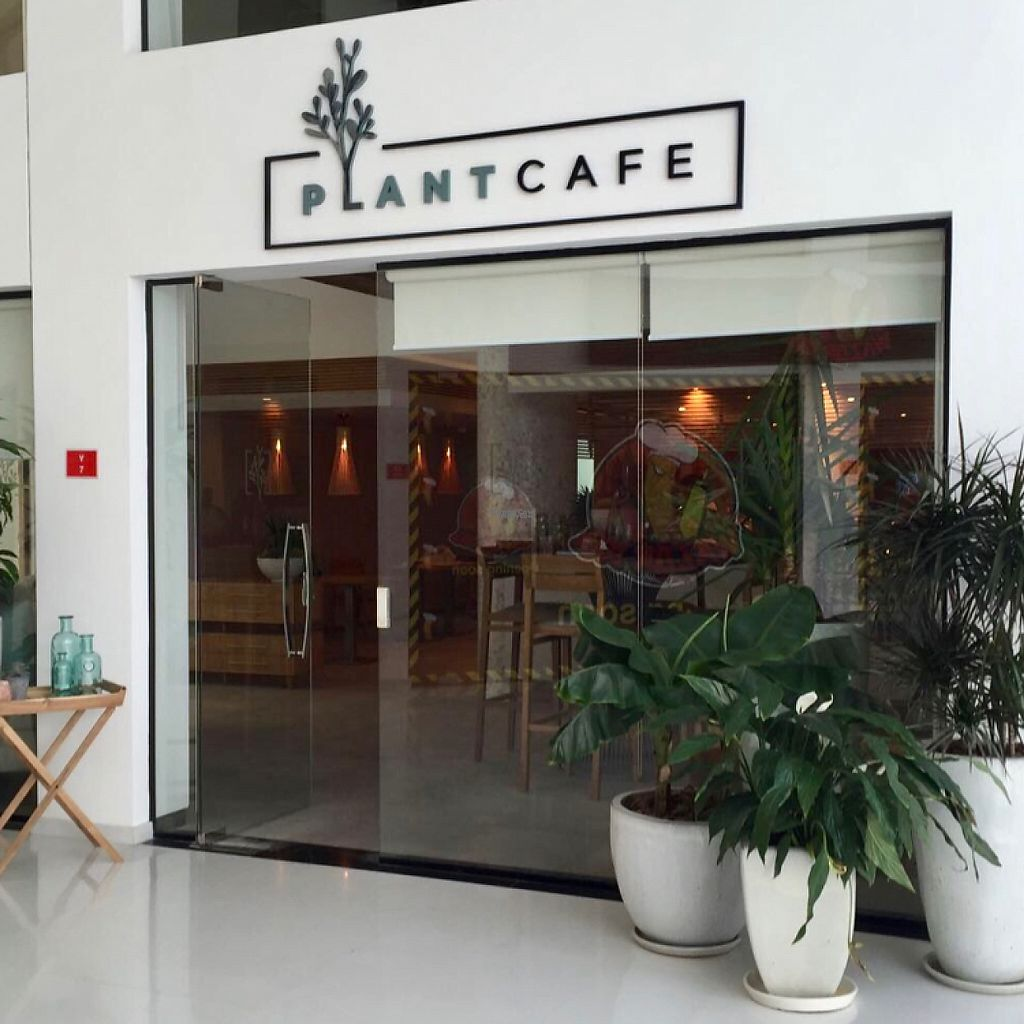 "Photo of Plant Cafe  by <a href=""/members/profile/Alinta"">Alinta</a> <br/>exterior photo <br/> February 3, 2017  - <a href='/contact/abuse/image/86523/221432'>Report</a>"
