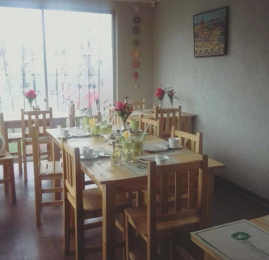 """Photo of Tenedor Verde  by <a href=""""/members/profile/community"""">community</a> <br/>Inside Tenedor Verde <br/> April 1, 2017  - <a href='/contact/abuse/image/86569/243247'>Report</a>"""