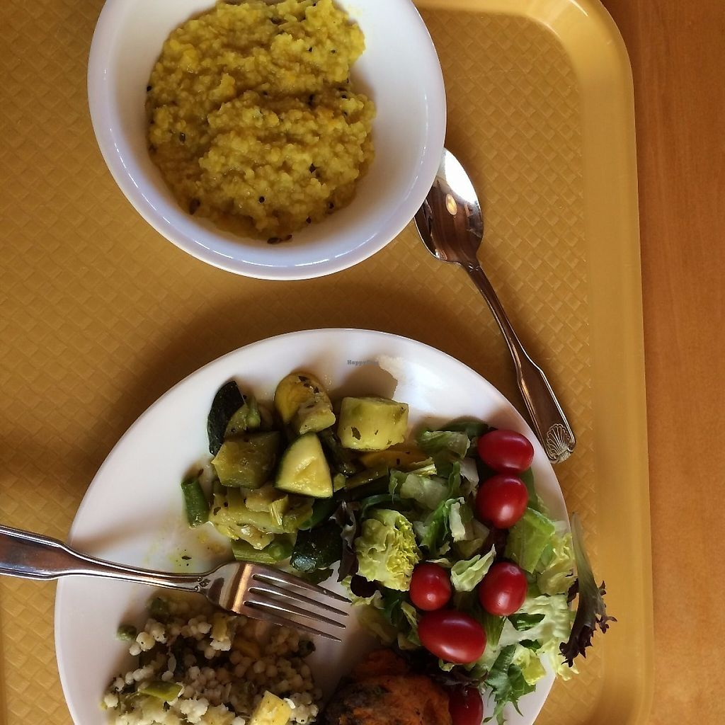 """Photo of Art of Living Retreat Center  by <a href=""""/members/profile/KatieBush"""">KatieBush</a> <br/>lunch- salad and kicheri <br/> May 25, 2017  - <a href='/contact/abuse/image/86705/262417'>Report</a>"""