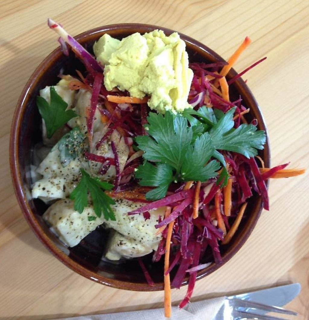 """Photo of The Magic Lotus Organic Cafe  by <a href=""""/members/profile/community"""">community</a> <br/>Organic Tri Colour Coleslaw with Rustic Potato Salad served with Vegan Cashew Cheese <br/> February 6, 2017  - <a href='/contact/abuse/image/86736/254684'>Report</a>"""