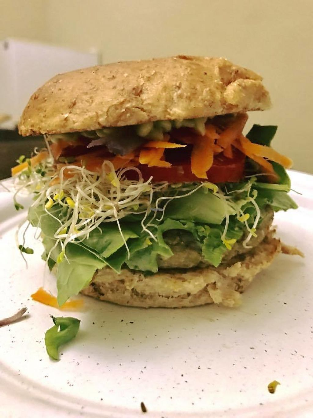 """Photo of VEGGIE  by <a href=""""/members/profile/community"""">community</a> <br/>veggie burger  <br/> April 1, 2017  - <a href='/contact/abuse/image/86996/243272'>Report</a>"""