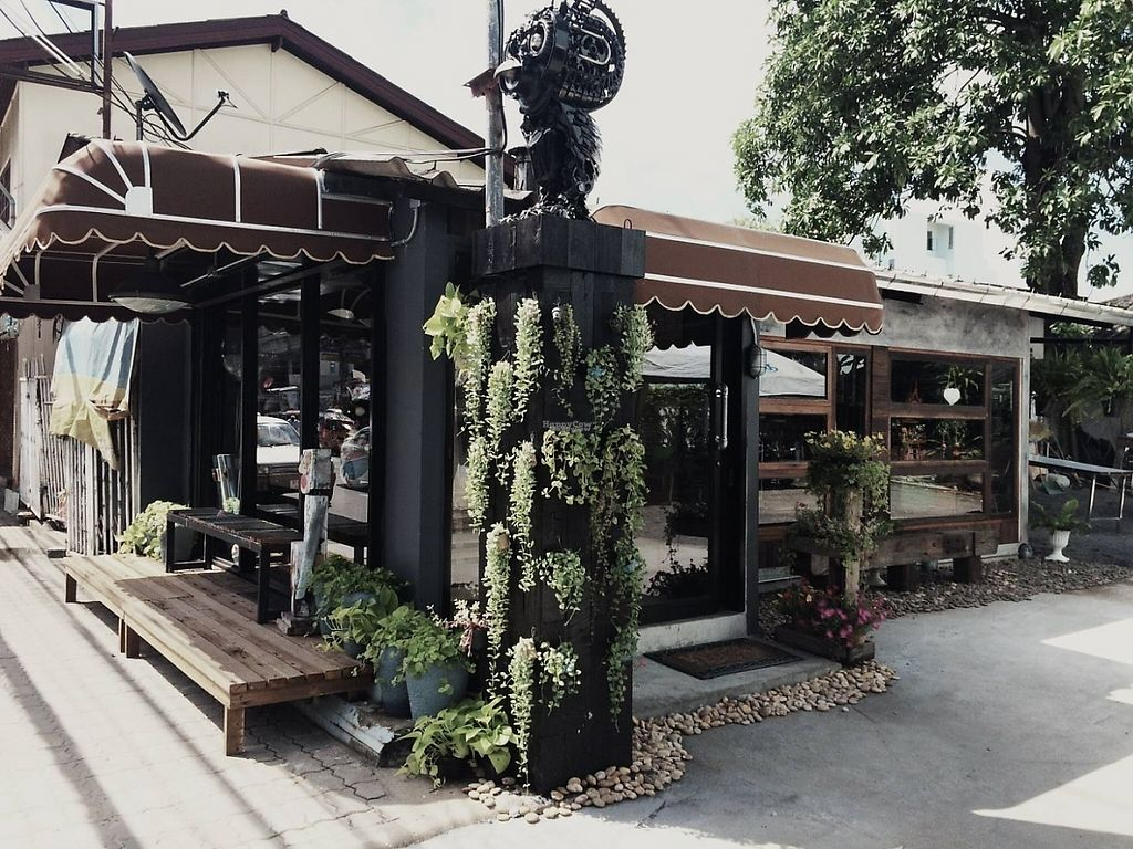 """Photo of Nokhook Cafe  by <a href=""""/members/profile/OscarRydelius"""">OscarRydelius</a> <br/>Outside the Café <br/> February 13, 2017  - <a href='/contact/abuse/image/87062/226212'>Report</a>"""