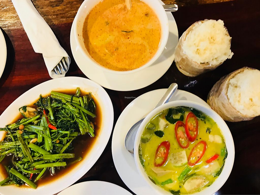 "Photo of Yo Green Restaurant  by <a href=""/members/profile/jolenep"">jolenep</a> <br/>Green Curry, Mussaman Curry, Stir Fry Morning Glory & Sticky Rice ??? <br/> November 25, 2017  - <a href='/contact/abuse/image/87150/328944'>Report</a>"