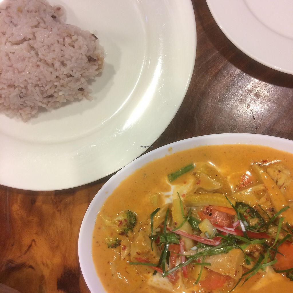 "Photo of Yo Green Restaurant  by <a href=""/members/profile/LluisandManu"">LluisandManu</a> <br/>Delicious red curry with chicken and brown rice <br/> December 9, 2017  - <a href='/contact/abuse/image/87150/333848'>Report</a>"