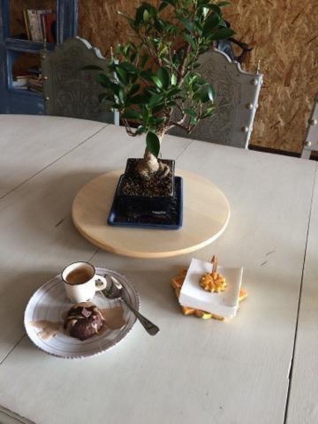 """Photo of Espaco Portal  by <a href=""""/members/profile/RUTE"""">RUTE</a> <br/>Café Biológico Destination Premium Brownie de chocolate e manteiga de amendoim  <br/> February 15, 2017  - <a href='/contact/abuse/image/87218/226909'>Report</a>"""