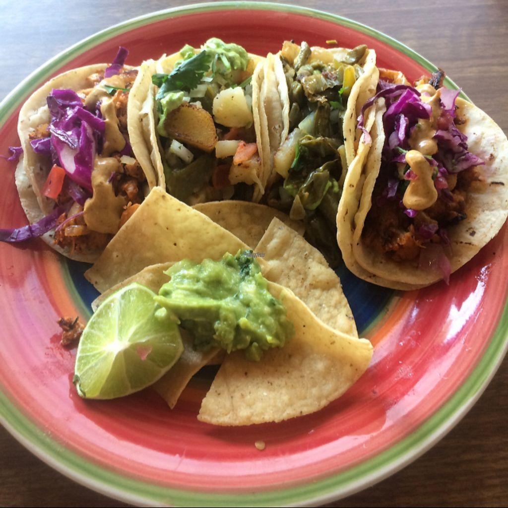"Photo of La Charrita Mexican Restaurant  by <a href=""/members/profile/glassesgirl79"">glassesgirl79</a> <br/>Jackfruit, potato, cactus and soyrizo tacos <br/> April 9, 2017  - <a href='/contact/abuse/image/87279/246517'>Report</a>"