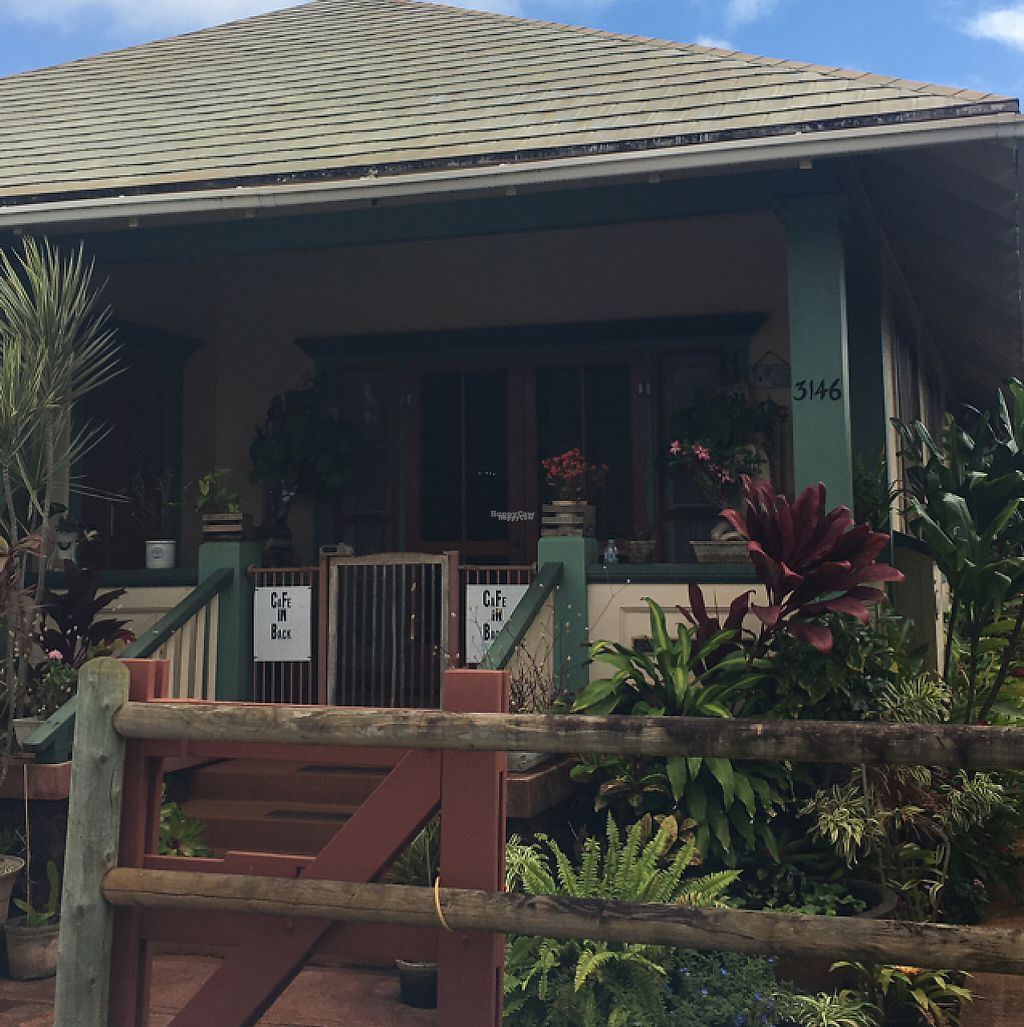 """Photo of The Greenery Cafe  by <a href=""""/members/profile/sarahveg"""">sarahveg</a> <br/>house in front of the cafe; walk alongside the right of the house. cafe is in the back <br/> February 19, 2017  - <a href='/contact/abuse/image/87327/228354'>Report</a>"""