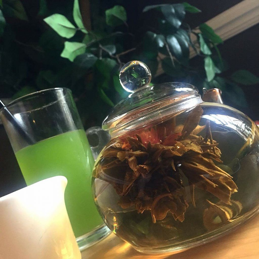 """Photo of Mystery Tea House  by <a href=""""/members/profile/FailennMolloy"""">FailennMolloy</a> <br/>cactus juice and black&gold blooming tea  <br/> July 25, 2017  - <a href='/contact/abuse/image/87411/284749'>Report</a>"""