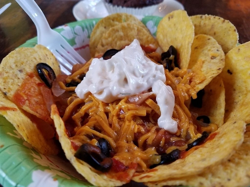 """Photo of Music Forest Cafe  by <a href=""""/members/profile/EverydayTastiness"""">EverydayTastiness</a> <br/>taco salad <br/> February 24, 2017  - <a href='/contact/abuse/image/87417/230092'>Report</a>"""