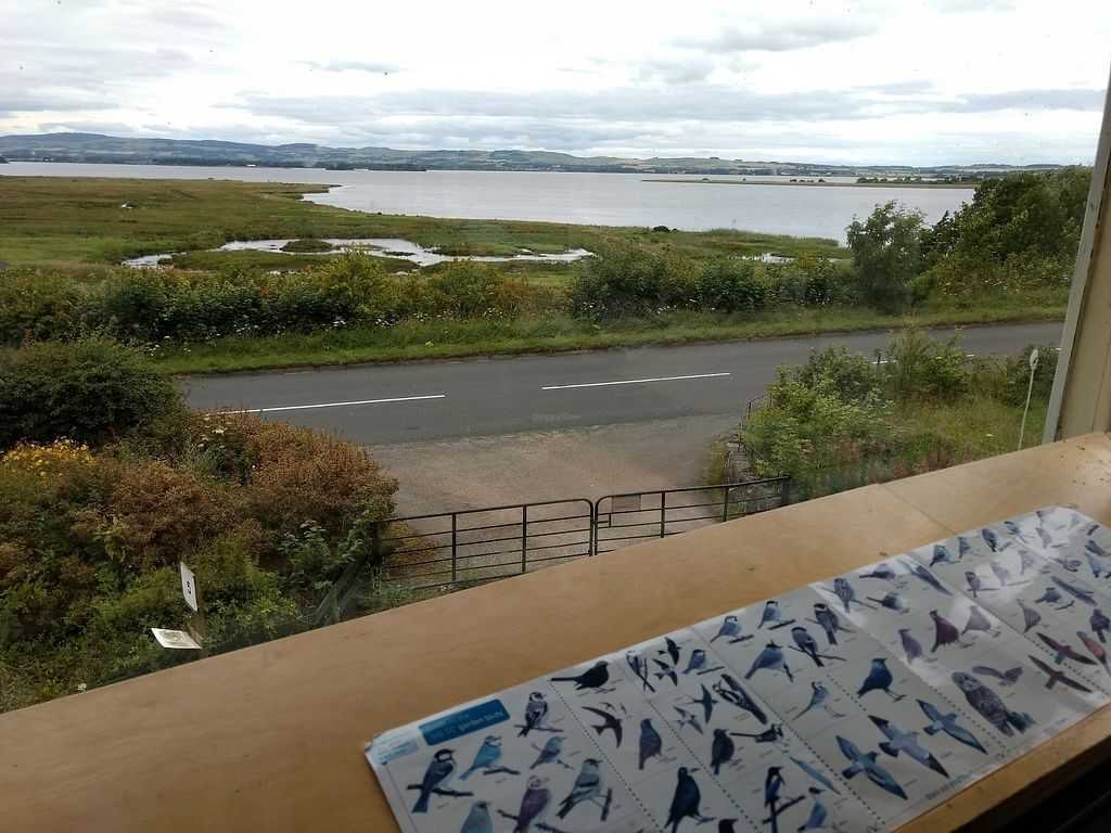 """Photo of RSPB Loch Leven Cafe  by <a href=""""/members/profile/craigmc"""">craigmc</a> <br/>nice view <br/> July 21, 2017  - <a href='/contact/abuse/image/87475/282756'>Report</a>"""