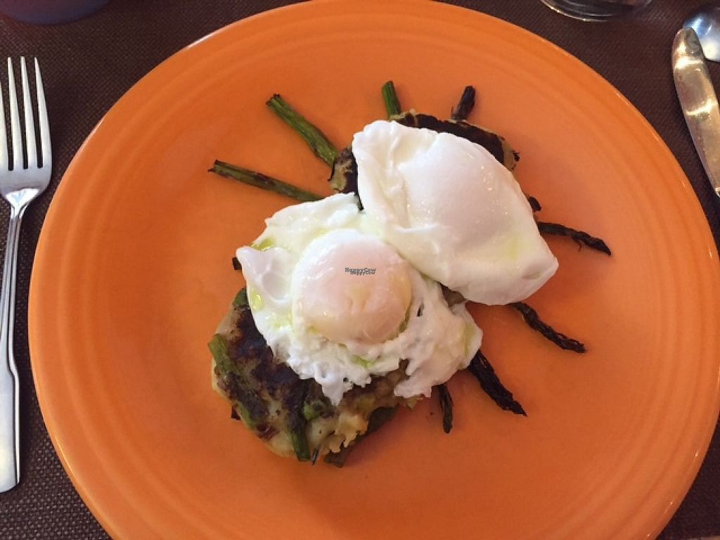 """Photo of Acacia House Inn  by <a href=""""/members/profile/NorthernStar"""">NorthernStar</a> <br/>Gourmet Bubble & Squeak with asparagus, leeks and apple. I added the poached eggs. Before that it was vegan. Scrumptious! <br/> February 23, 2017  - <a href='/contact/abuse/image/87478/229733'>Report</a>"""