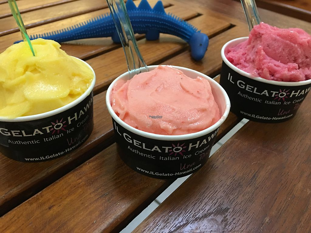 "Photo of Il Gelato Hawaii  by <a href=""/members/profile/myra975"">myra975</a> <br/>Vegan gelatos <br/> March 6, 2017  - <a href='/contact/abuse/image/87576/233437'>Report</a>"