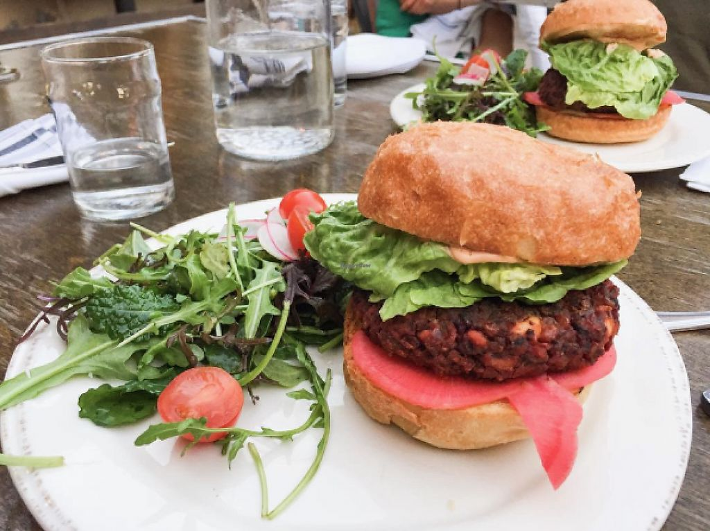 """Photo of Donna Jean  by <a href=""""/members/profile/veganinsandiego"""">veganinsandiego</a> <br/>The new Black Eye Peas Burger <br/> May 25, 2017  - <a href='/contact/abuse/image/87600/262242'>Report</a>"""