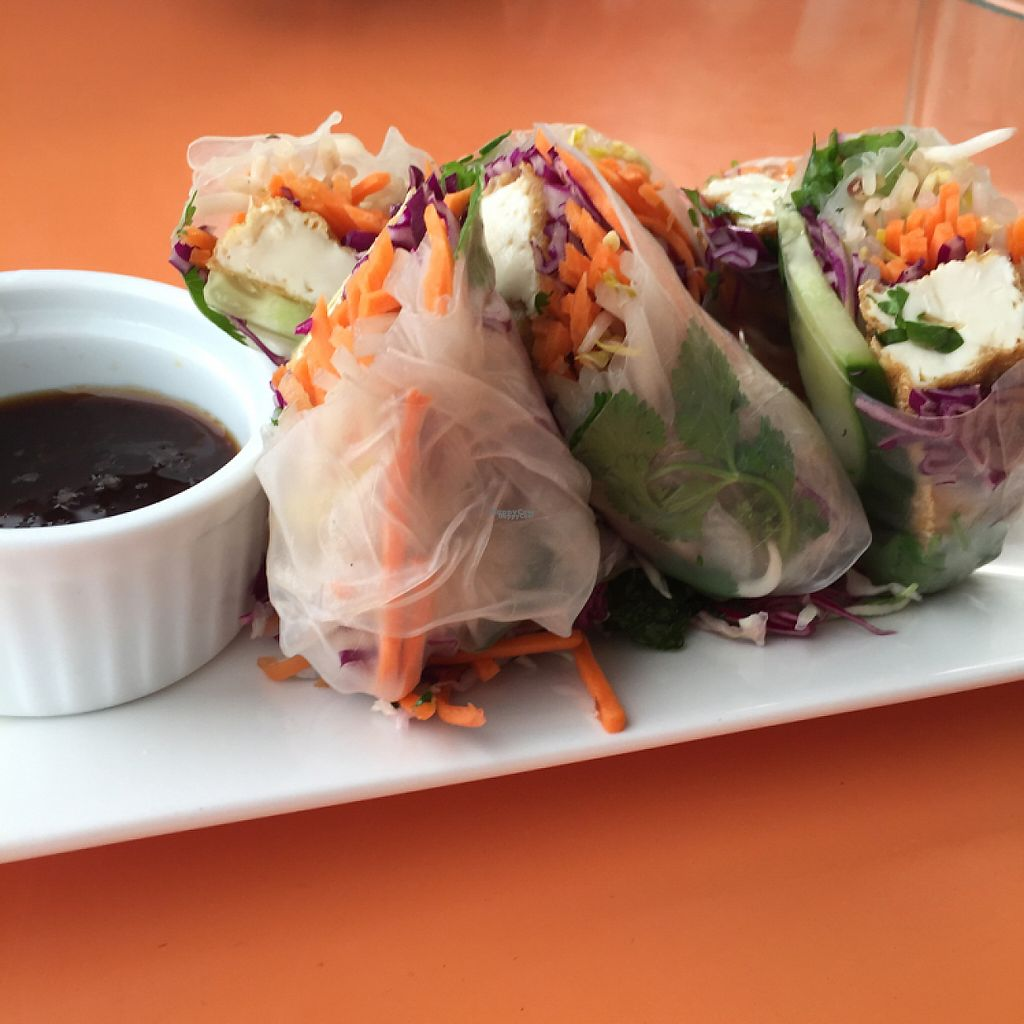 "Photo of Viki Cafe  by <a href=""/members/profile/corrinalyon"">corrinalyon</a> <br/>fresh spring rolls <br/> February 27, 2017  - <a href='/contact/abuse/image/87672/230957'>Report</a>"