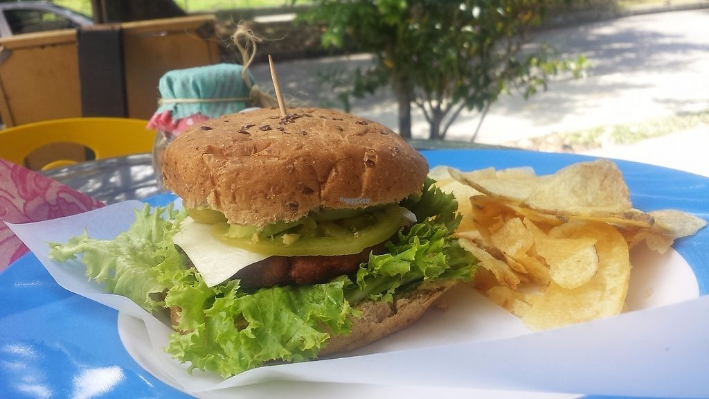 """Photo of Makadamia'm  by <a href=""""/members/profile/Simon-S1"""">Simon-S1</a> <br/>Lentil Burger + Vegan Cheese <br/> February 27, 2017  - <a href='/contact/abuse/image/87801/231081'>Report</a>"""
