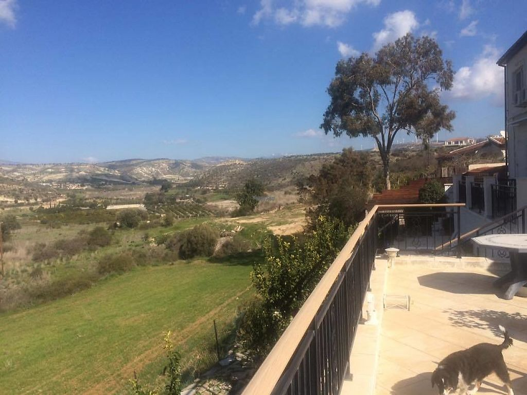 "Photo of The Farriers Vegan Bed & Breakfast  by <a href=""/members/profile/bazzacy"">bazzacy</a> <br/>Looking out onto the Diarizos Valley <br/> March 8, 2017  - <a href='/contact/abuse/image/87932/234085'>Report</a>"