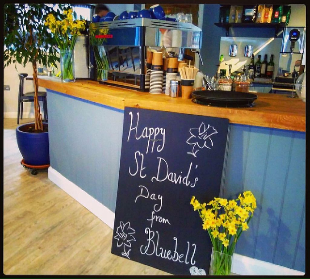 """Photo of Bluebell Coffee UK  by <a href=""""/members/profile/charclothier"""">charclothier</a> <br/>indoor  <br/> March 2, 2017  - <a href='/contact/abuse/image/87982/231825'>Report</a>"""