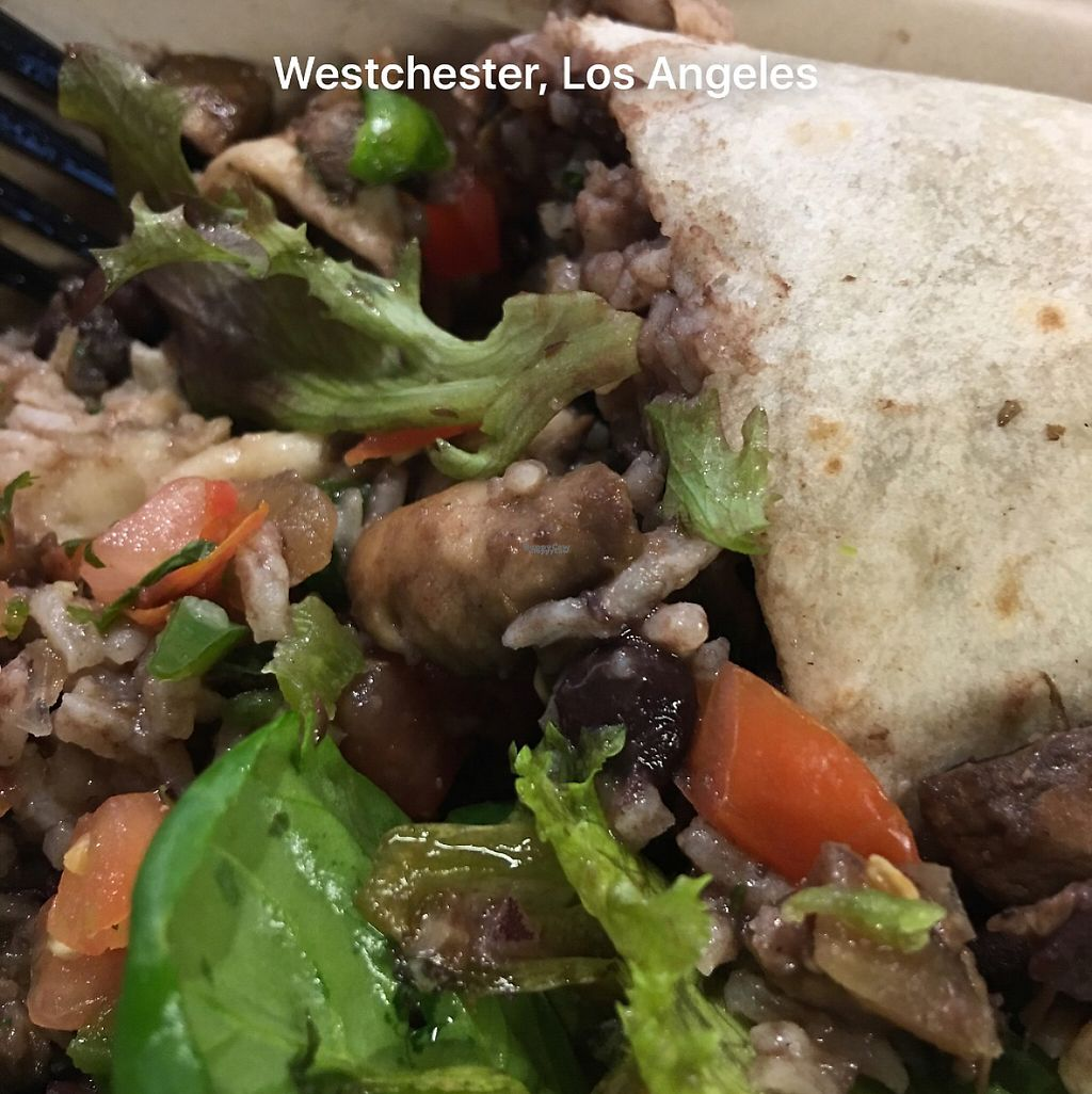 """Photo of REMOVED: LAX - Loteria - T5  by <a href=""""/members/profile/Mcristler"""">Mcristler</a> <br/>mushrooms with epazote burrito. yummy! <br/> March 10, 2017  - <a href='/contact/abuse/image/87987/234876'>Report</a>"""