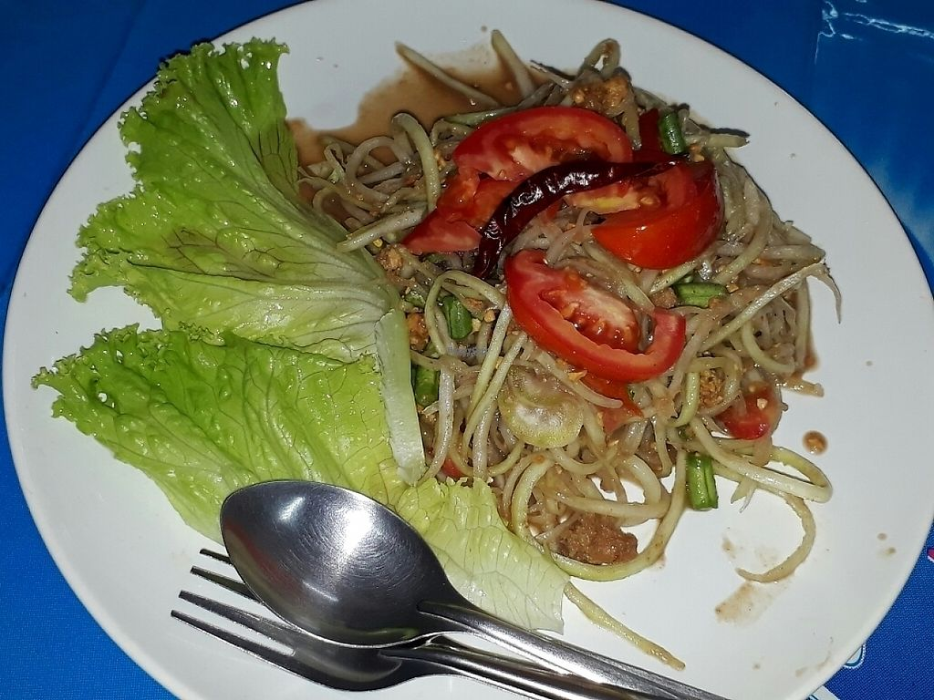 "Photo of Vegetarian  by <a href=""/members/profile/LilacHippy"">LilacHippy</a> <br/>Som tam (papaya salad) <br/> March 11, 2017  - <a href='/contact/abuse/image/88031/235035'>Report</a>"