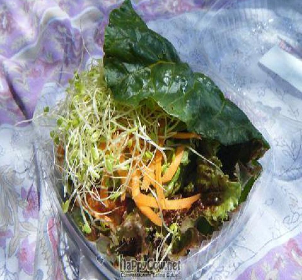 """Photo of Joy's Place  by <a href=""""/members/profile/eric"""">eric</a> <br/>Live nut burger.  Could have used a larger chard leaf or two leaves <br/> May 2, 2010  - <a href='/contact/abuse/image/8805/199516'>Report</a>"""