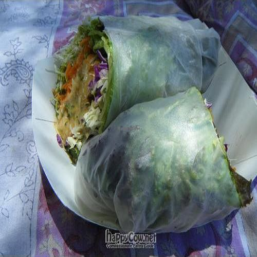 """Photo of Joy's Place  by <a href=""""/members/profile/eric"""">eric</a> <br/>Tempeh wrap, yummy sauce <br/> May 2, 2010  - <a href='/contact/abuse/image/8805/4408'>Report</a>"""