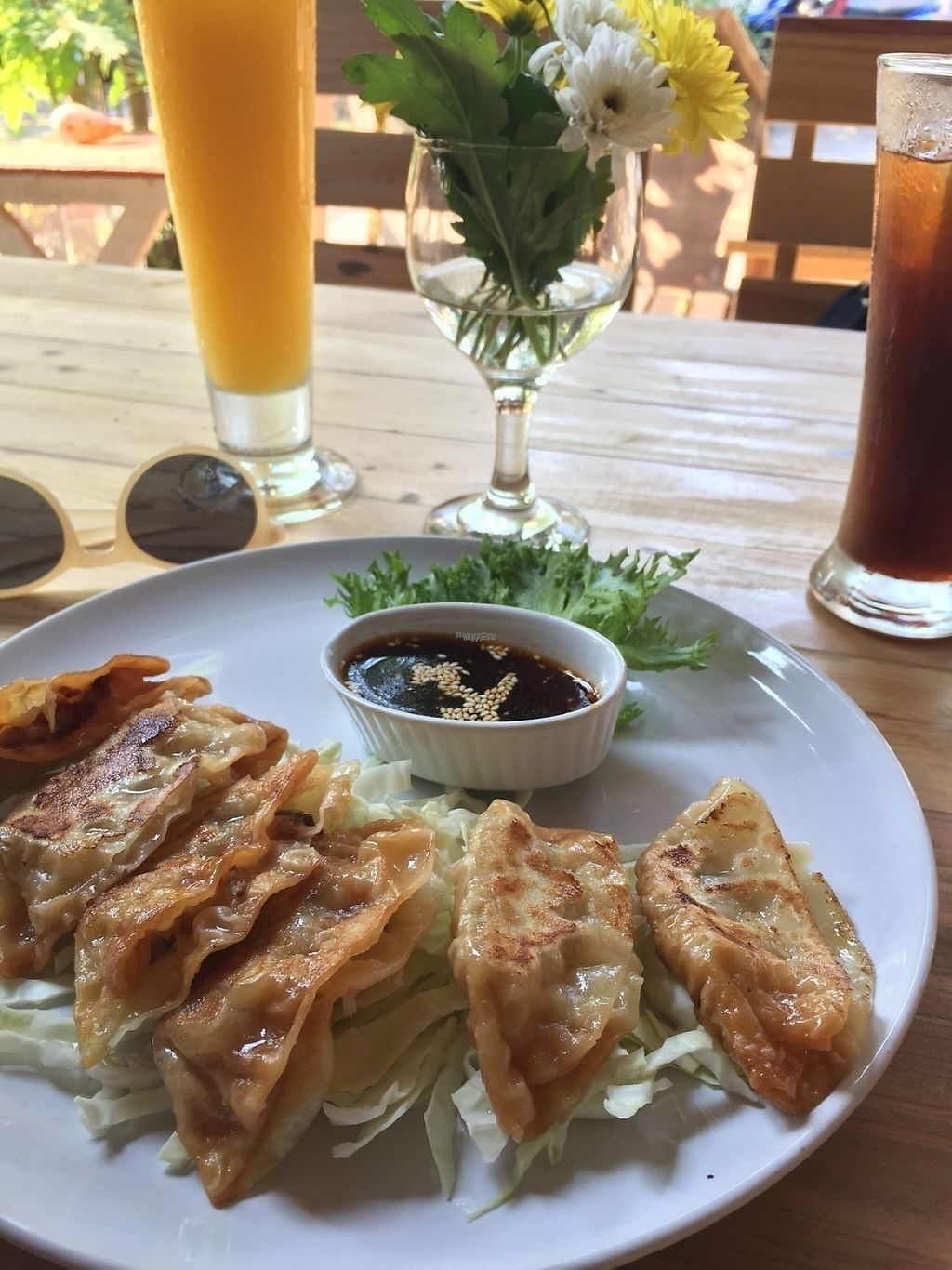 "Photo of Tofu  by <a href=""/members/profile/JuliaAnna"">JuliaAnna</a> <br/>Gyoza- so tasty! <br/> March 5, 2017  - <a href='/contact/abuse/image/88087/232900'>Report</a>"