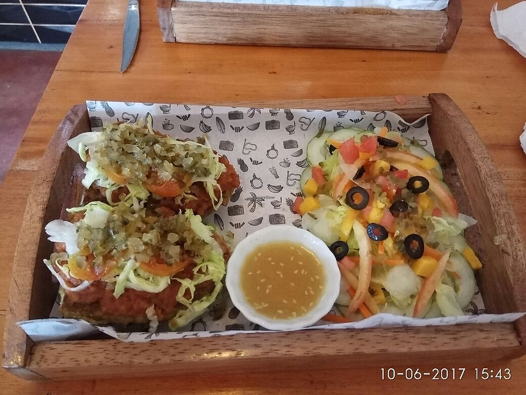 """Photo of Shaka  by <a href=""""/members/profile/GeckoHeaven"""">GeckoHeaven</a> <br/>The Bombay Royal with Salad <br/> June 12, 2017  - <a href='/contact/abuse/image/88198/268273'>Report</a>"""