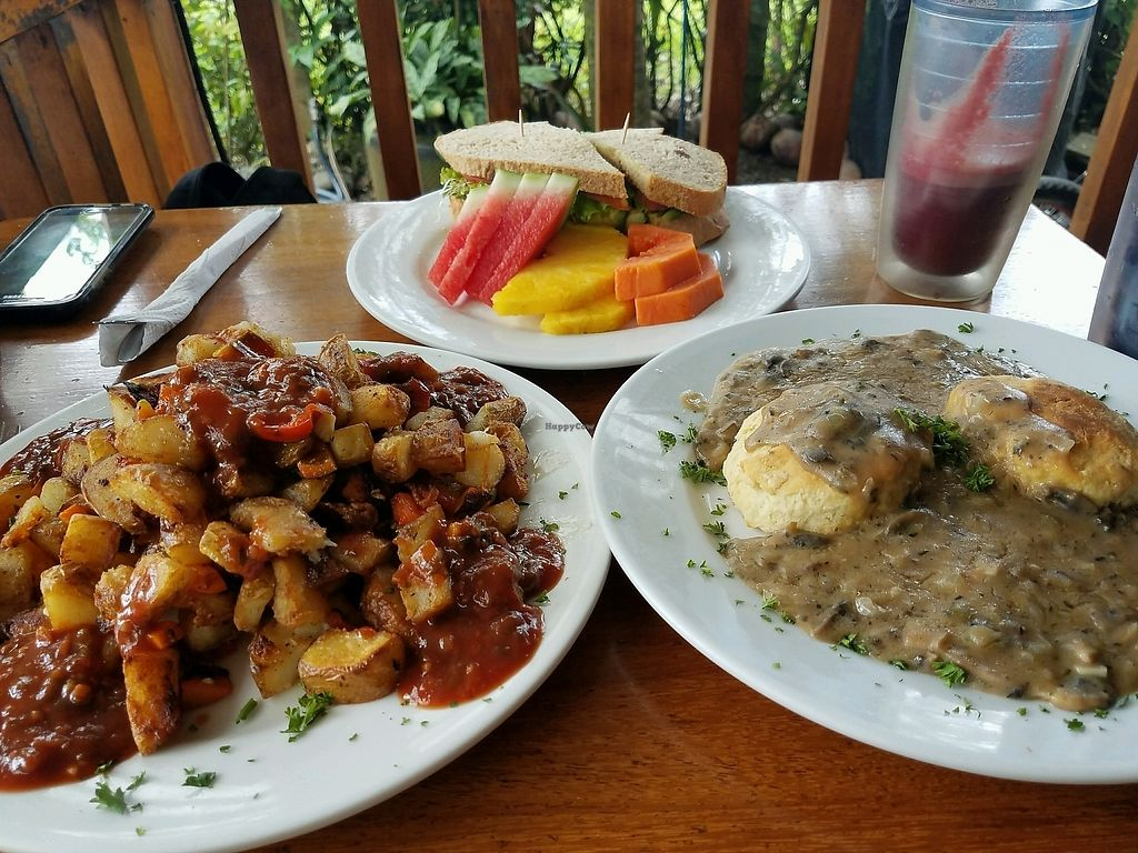 """Photo of Bread and Chocolate  by <a href=""""/members/profile/Vegnut318"""">Vegnut318</a> <br/>Crispy Potatoes w/ Jamaican Jerk BBQ Sauce and Biscuits w/Mushroom Gravy <br/> March 22, 2018  - <a href='/contact/abuse/image/8819/374221'>Report</a>"""